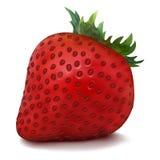 Vektor-Erdbeere Lizenzfreie Stockfotografie