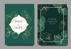 Vektor-Erdbeerfrüchte Gravierte Tintenkunst Heiratsdekorative mit Blumengrenze der hintergrundkarte lizenzfreie abbildung