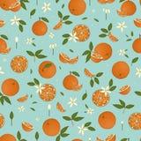 Vektor färbte nahtloses Muster von den Orangen, die auf blauem Pastellhintergrund lokalisiert wurden stock abbildung