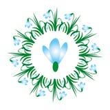Vektor färbte ringsum Frühlingsmandala mit Blumenschneeglöckchen - erwachsene Malbuchseite Lizenzfreies Stockfoto