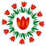 Vektor färbte ringsum Frühlingsmandala mit Blumentulpe - erwachsene Malbuchseite Stockfotos