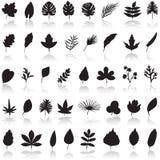 Vektor för bladsymbolsuppsättning Royaltyfri Fotografi