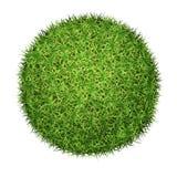 vektor för bollgräsgreen Arkivfoto