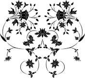 vektor för designelementblomma Royaltyfria Foton