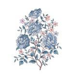 vektor för detaljerad teckning för bakgrund blom- för blommabild för bukett ljus vektor Blom- greeti för krusidullvår Arkivfoton