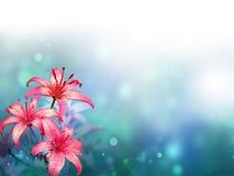vektor för detaljerad teckning för bakgrund blom- Arkivbilder