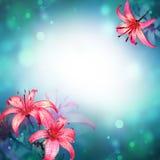 vektor för detaljerad teckning för bakgrund blom- Arkivfoton