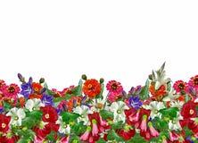 vektor för detaljerad teckning för bakgrund blom- Arkivbild