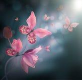 vektor för detaljerad teckning för bakgrund blom- Royaltyfri Foto
