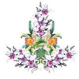 vektor för detaljerad teckning för bakgrund blom- för blommairis för svart kort kulör blom- white Blom- bukett för vattenfärg kan Royaltyfri Foto