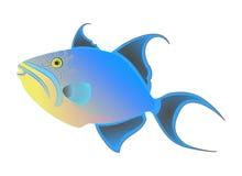 Vektor för drottningtriggerfish Färgrik exotisk tropisk fisk som isoleras på vit bakgrund Havdjur, rolig charact för tecknad film Royaltyfri Foto