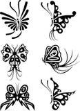 vektor för fjärilsdesignelement Fotografering för Bildbyråer