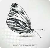 vektor för fjärilsteckningshand Arkivfoton