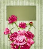 vektor för hälsningsferiepioner Royaltyfria Bilder
