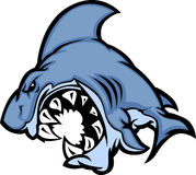vektor för haj för tecknad filmbildmaskot Royaltyfri Foto