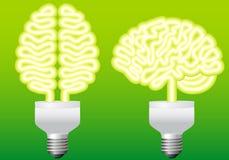 vektor för hjärnkulaenergi Royaltyfria Bilder