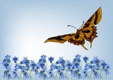 vektor för illustration för bakgrundsfjäril blom- Royaltyfria Bilder
