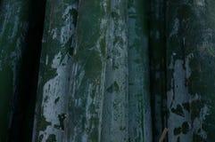vektor för illustration för bakgrundsbambugreen Royaltyfria Bilder