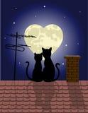 vektor för kattillustrationförälskelse royaltyfri illustrationer
