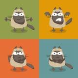 vektor för kattsamlingsillustration Royaltyfri Foto