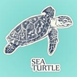 Vektor för klistermärke för havssköldpadda illustratören för illustrationen för handen för borstekol gör teckningen tecknade som  stock illustrationer