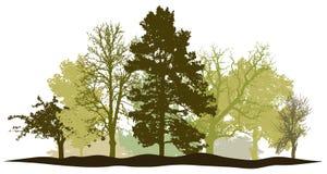 Vektor för kontur för trädskogvår royaltyfri illustrationer