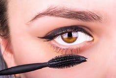 vektor för mascara för ögonkvinnligillustration Fotografering för Bildbyråer