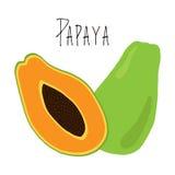 Vektor för Papayafruktklotter royaltyfri illustrationer