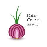 Vektor för röd lök Royaltyfria Bilder