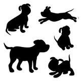 vektor för silhouette för bakgrundshundgrunge valpen i olikt poserar isolerade symboler av hunden Royaltyfria Foton