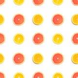 vektor för skivor för citrus illustrationmodell seamless royaltyfri foto