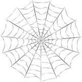 Vektor för spindelrengöringsduk Arkivbild