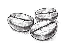 Vektor för symbol för kaffeböna stock illustrationer