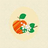 Vektor för tappning för blomning för modell för naturäpplefrukt vektor illustrationer