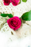 vektor för valentin för pardagillustration älska Royaltyfri Fotografi