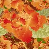 Vektor Fantasieblumen - dekorative Zusammensetzung Blumen mit den langen Blumenblättern tapete Nahtlose Muster stock abbildung