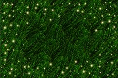 Vektor-festliche Kiefer verzweigt sich Hintergrund Tannenzweig-Weihnachtsmuster, Lichter Realistische grüne gezierte Baumaste vektor abbildung