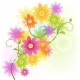 Vektor Gerbera-Blumenhintergrund Stockbilder