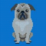Vektor gestricktes Hundemuster Pug-Hund auf blauem Hintergrund lizenzfreie abbildung