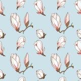 Vektor gezeichnete Magnolie blüht nahtloses Muster Stockfotografie