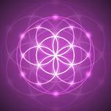 Vektor-glühende Blume der Leben-Symbol-Illustration Lizenzfreies Stockfoto
