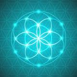 Vektor-glühende Blume der Leben-Symbol-Illustration Lizenzfreies Stockbild