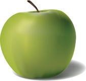 Vektor gröna Apple Arkivfoto