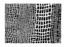 Vektor Hand auf Lager gezeichnete abstraktes Ð ¡ rocodile Hautnachahmung Stockfotografie