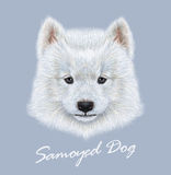 Vektor illustrerad stående av Samoyedhunden stock illustrationer