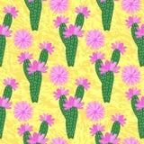 Vektor-Kaktus mit Blumenmuster Lizenzfreie Abbildung