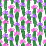 Vektor-Kaktus mit nahtlosem Muster der Blumen Vektor Abbildung