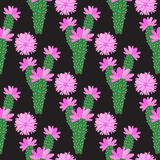 Vektor-Kaktus mit Rosa blüht nahtloses Muster Stock Abbildung