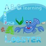 Vektor L fauna för hav för kräfta för tecken för tecknad film för vektor för bokstavsblåtthummer rolig lycklig, languster för bok Arkivbilder