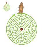 Vektor-Labyrinth, Labyrinth mit Murmeltier und Nuss Lizenzfreie Stockfotos
